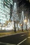 クリスマス☆_d0118053_1542447.jpg