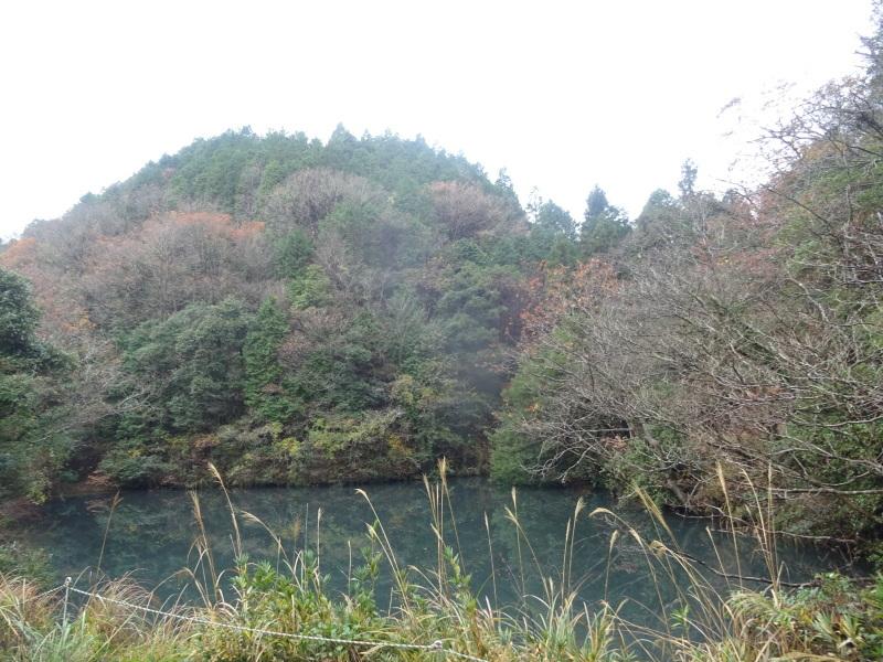 孝子駅に「みさき里山クラブ」が門松を寄贈しました _c0108460_20404403.jpg