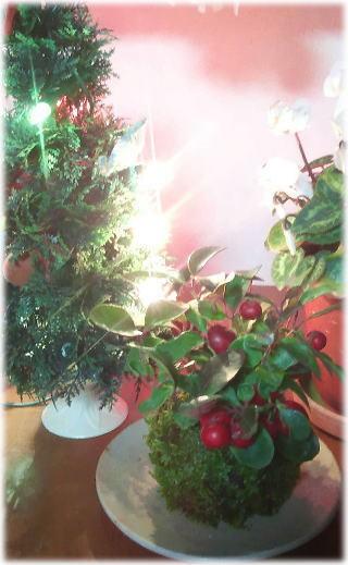 クリスマス☆_d0142770_23393999.jpg