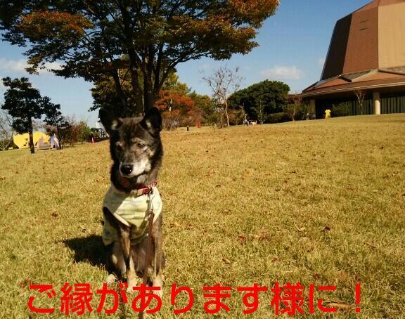 b0127675_00405904.jpg