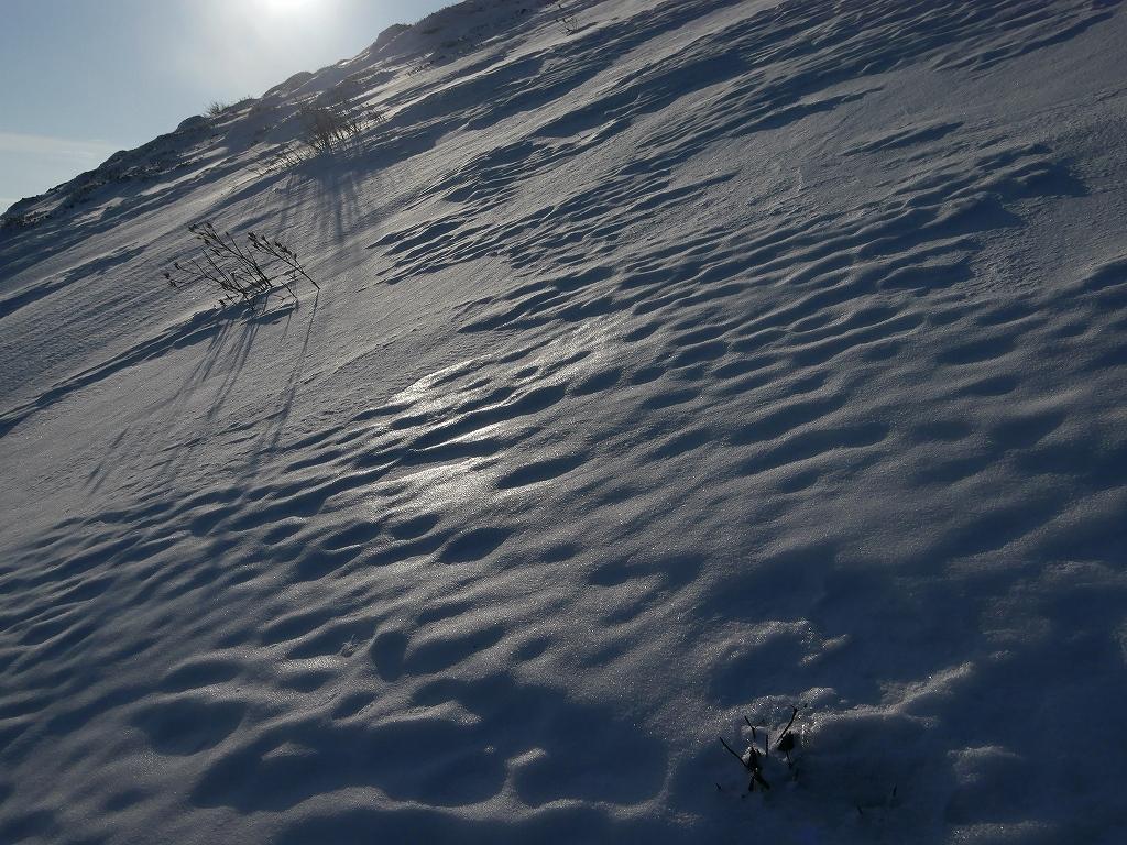 山納め(?)の樽前山、12月24日-その1-_f0138096_1133591.jpg