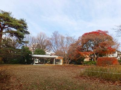 年末年始休園のお知らせ_b0049307_7401314.jpg