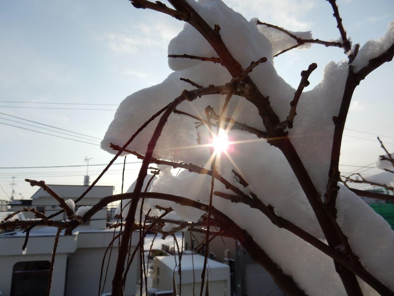 冬至から4日後の日の出_c0025115_22283390.jpg