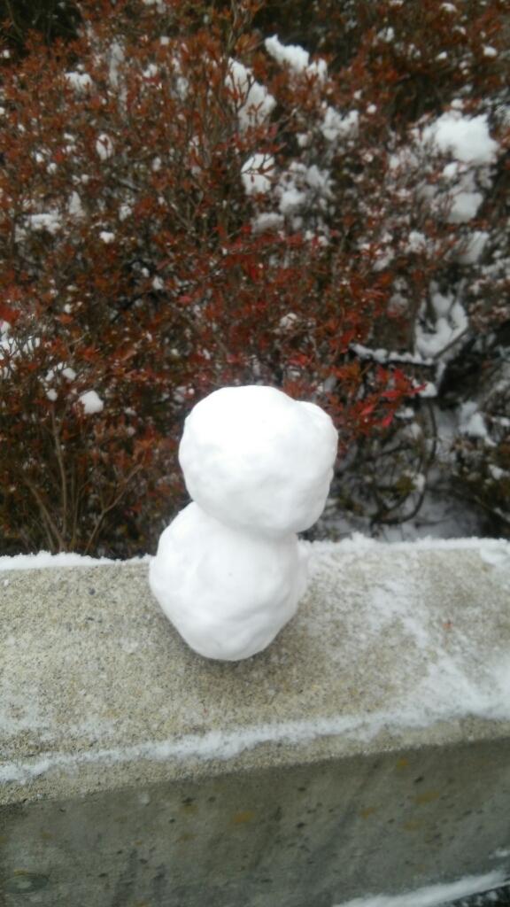 函館は雪模様_b0106766_11580215.jpg