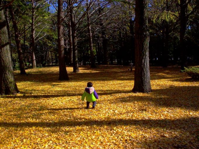 府中市 野川公園の冬景色_e0165983_13381410.jpg