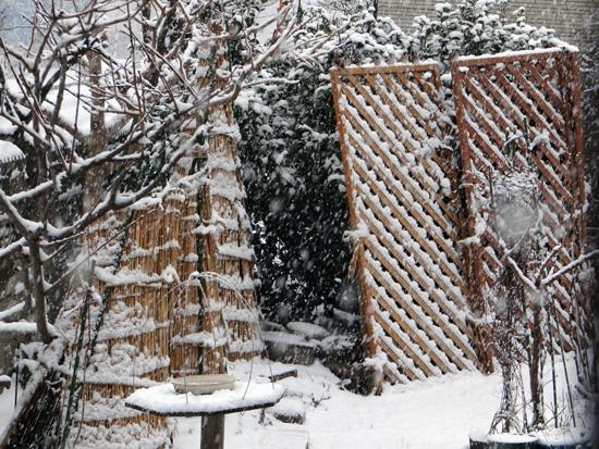 スズメの餌台、冬本番の雪景色♪_a0136293_1664644.jpg