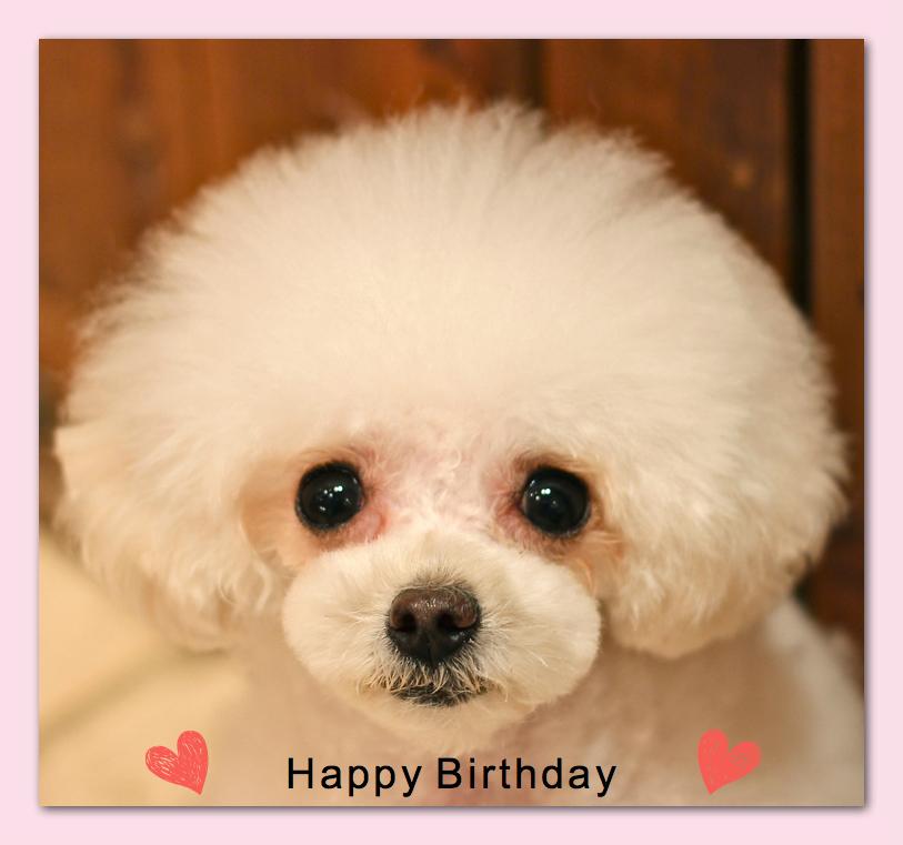 Happy Birthday♡レナちゃん&ノアちゃん♡_d0060413_20525048.jpg