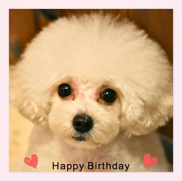 Happy Birthday♡レナちゃん&ノアちゃん♡_d0060413_2052505.jpg