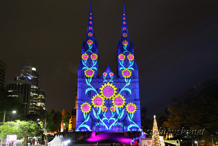 Christmas illumination ~4~ St. Mary\'s Cathedral_f0084337_20215940.jpg