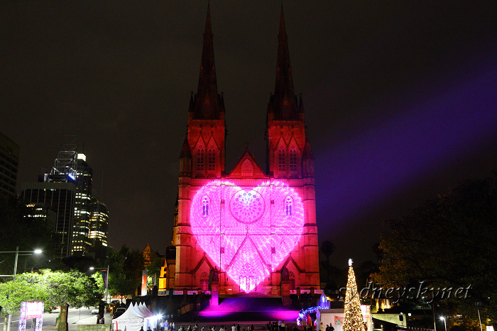 Christmas illumination ~4~ St. Mary\'s Cathedral_f0084337_20215944.jpg