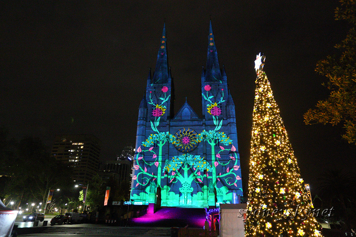 Christmas illumination ~4~ St. Mary\'s Cathedral_f0084337_20215959.jpg