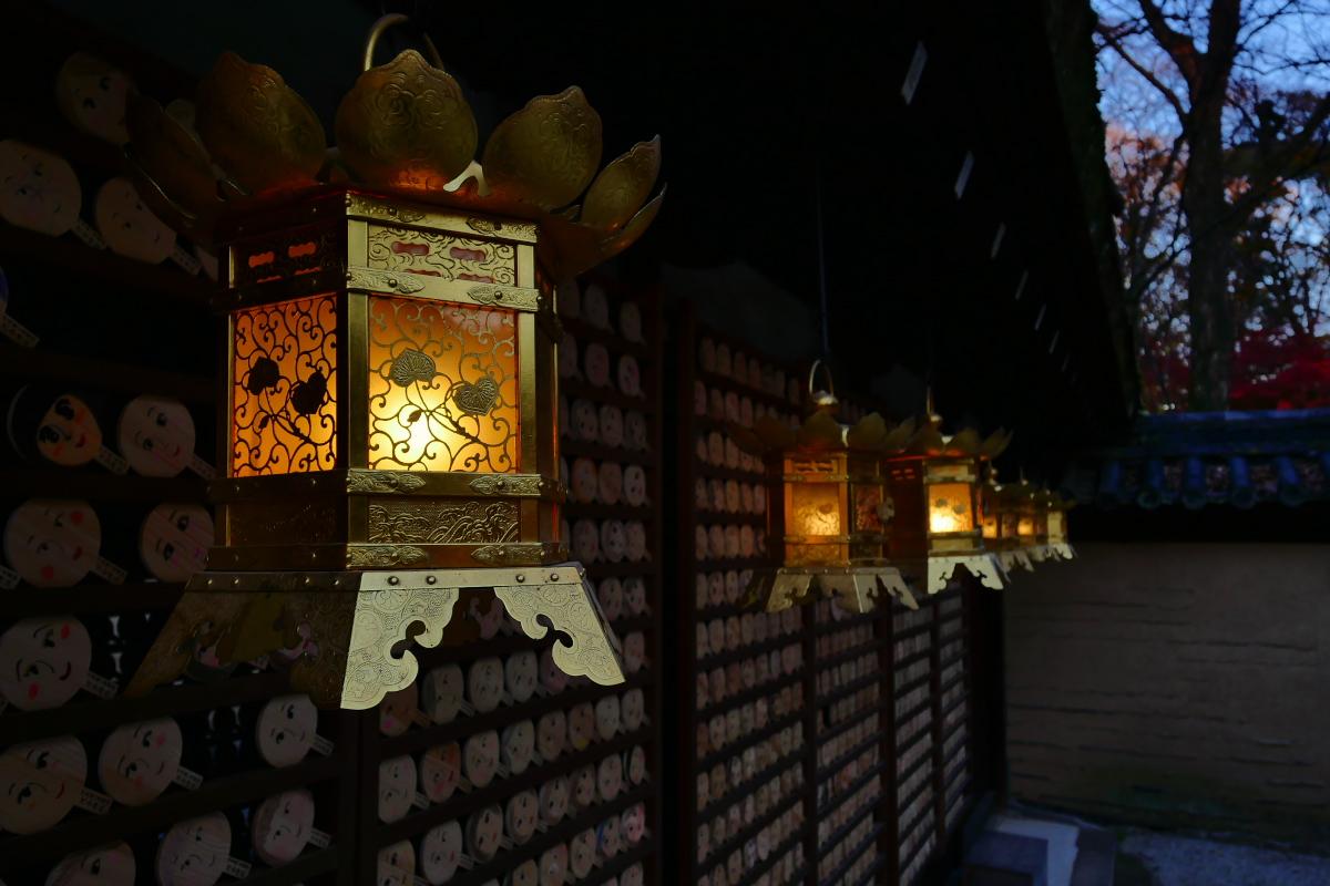 紅葉2015   糺の森                       _f0021869_0144739.jpg