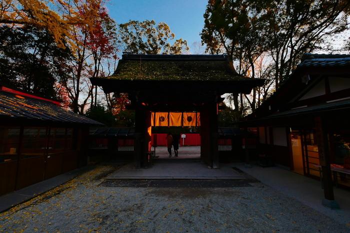 紅葉2015   糺の森                       _f0021869_0151511.jpg