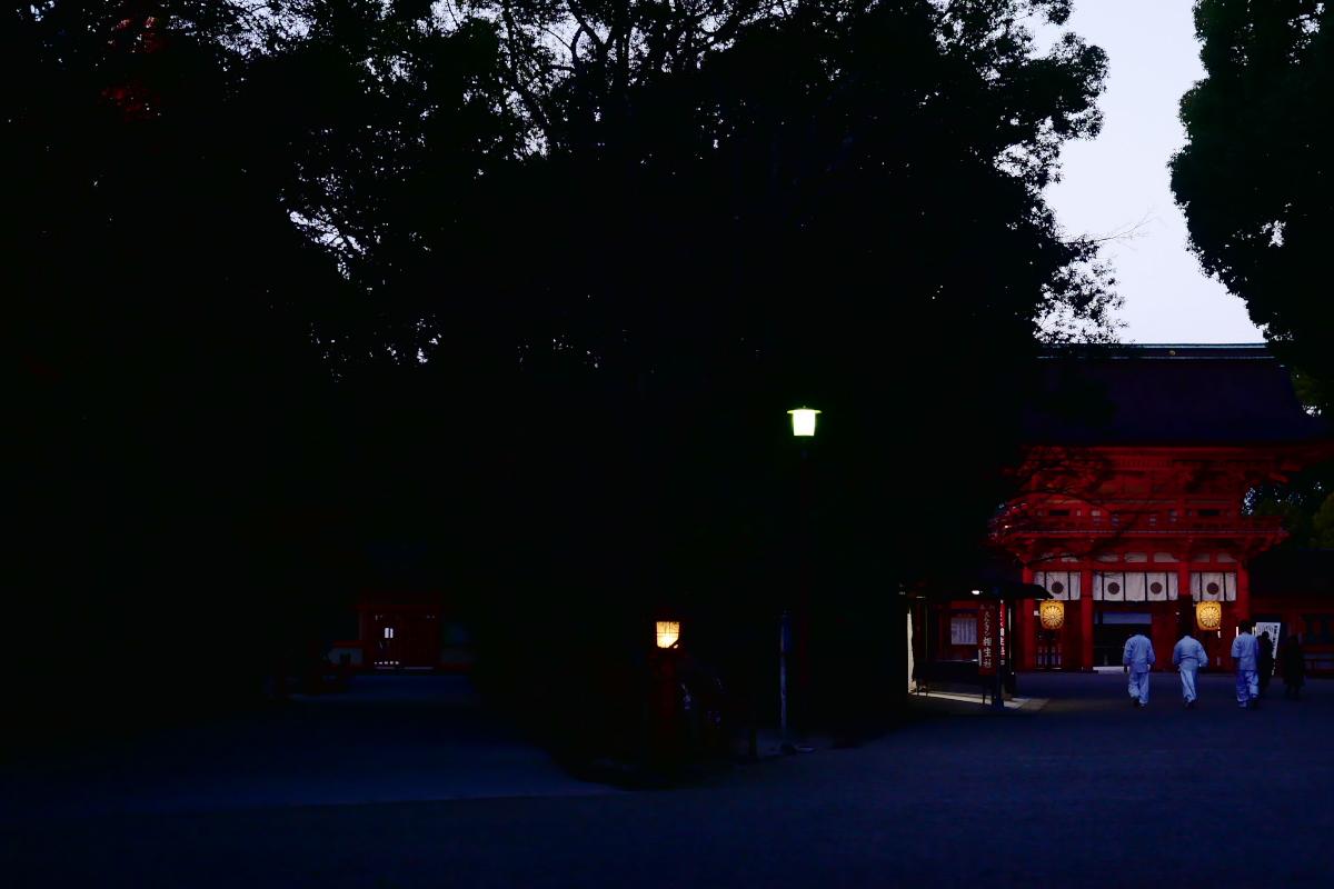 紅葉2015   糺の森                       _f0021869_0165398.jpg
