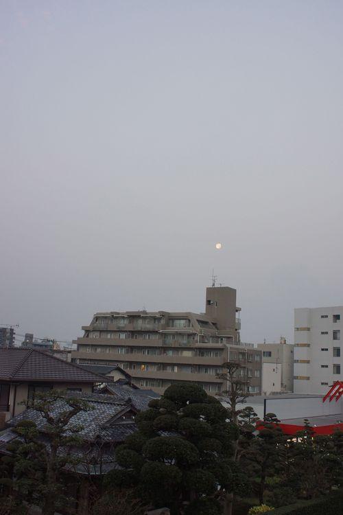 朝歌12月27日_c0169176_843179.jpg