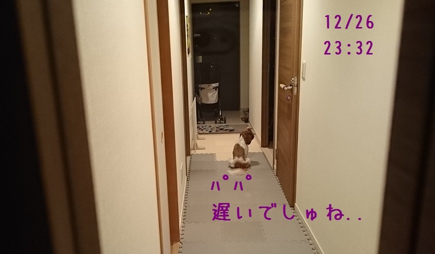 c0363378_16110757.jpg