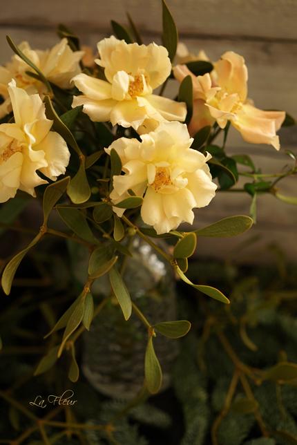 香り漂うバラたち♡_f0127281_1584211.jpg