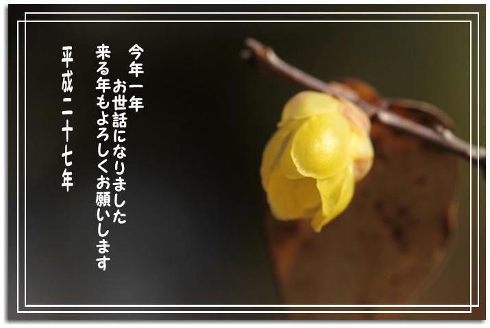 f0164592_237479.jpg
