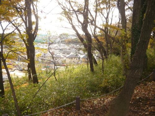 ポタリング 多摩よこやまの道 尾根幹線道路_a0262093_17451951.jpg