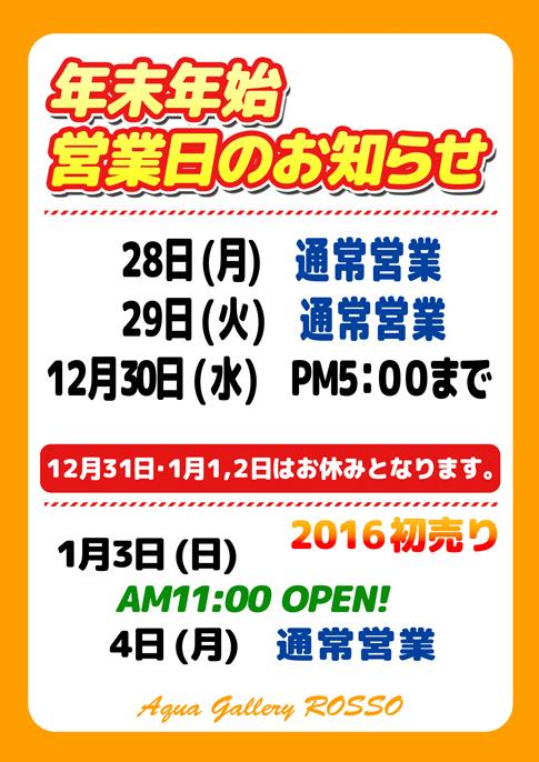 b0240608_20073664.jpg