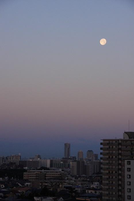 朝に狙う月の風景_b0268615_7222017.jpg