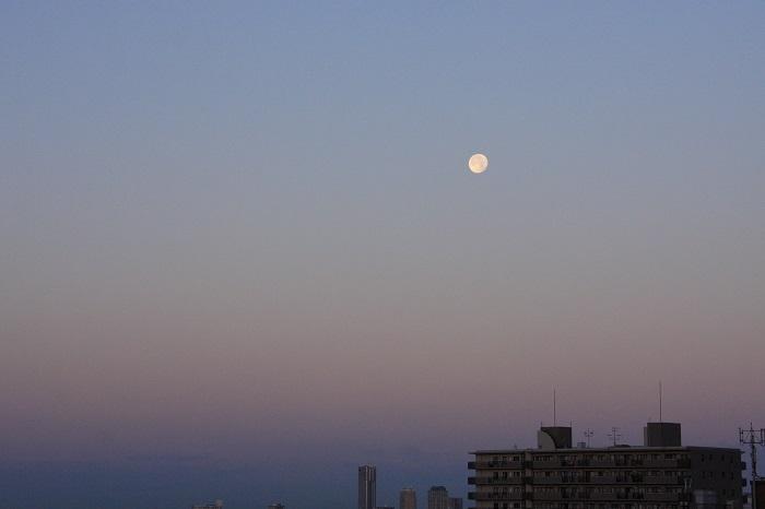 朝に狙う月の風景_b0268615_7224517.jpg