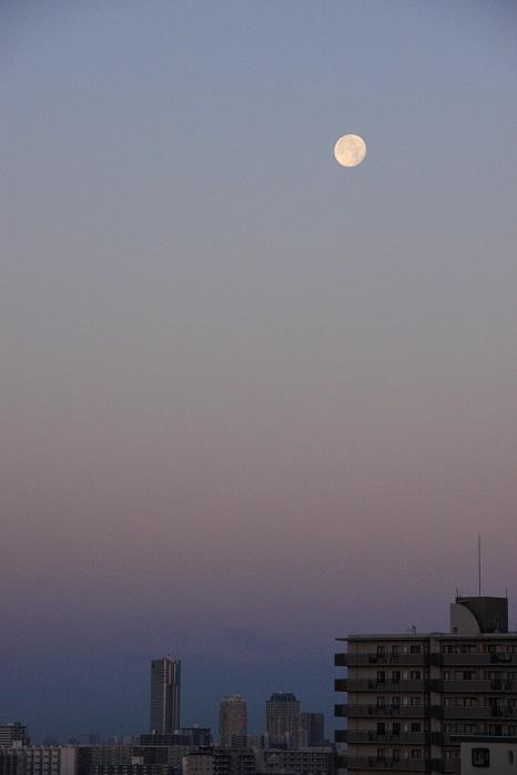 朝に狙う月の風景_b0268615_72358.jpg