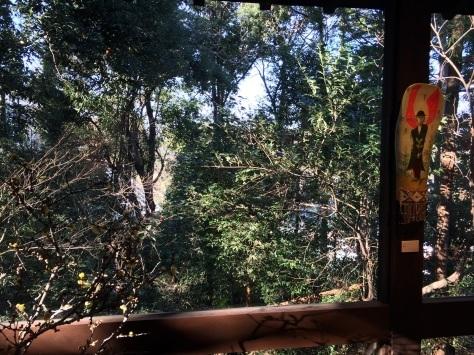 ネギ畑の前の美術館_a0103940_06302106.jpg