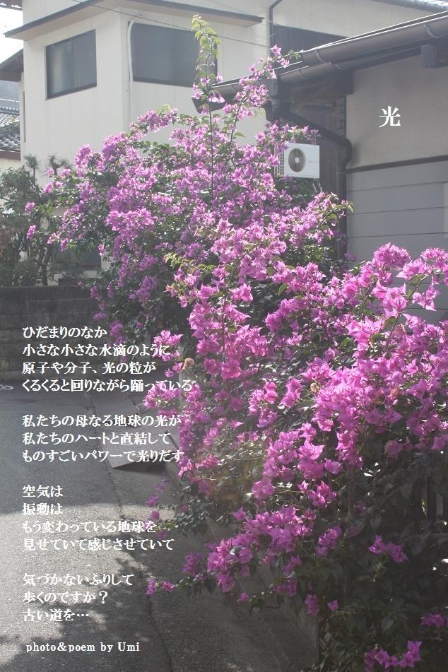 f0351844_16401643.jpg