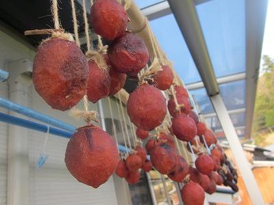 干し柿と門松_e0173655_2214132.jpg
