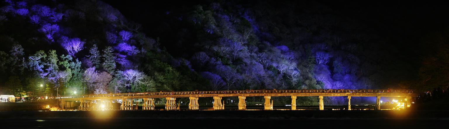 嵐山花灯路 2015                        _f0021869_23162361.jpg
