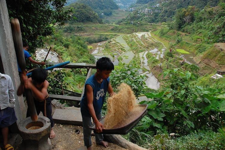 """水牛と山岳民族の """"循環する暮らし~フィリピン山岳地方でホームステイの旅~_b0128901_00154602.jpg"""