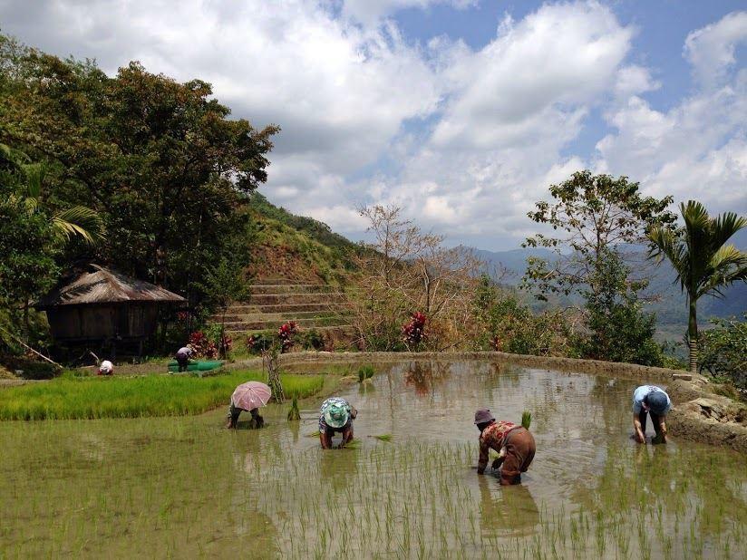 """水牛と山岳民族の """"循環する暮らし~フィリピン山岳地方でホームステイの旅~_b0128901_00171134.jpg"""