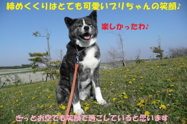 f0121712_14565187.jpg