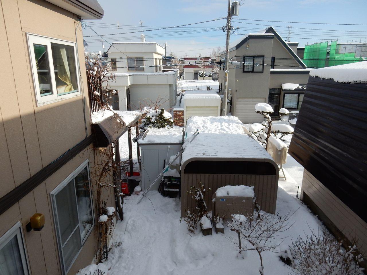 久々の雪らしい雪_c0025115_22013738.jpg