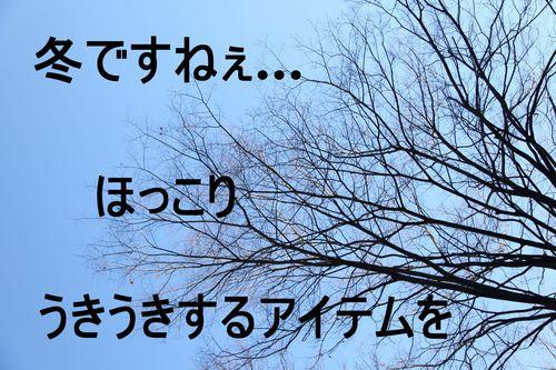 f0165518_16544634.jpg