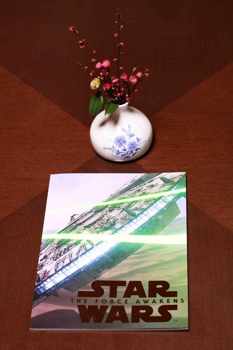 アナタが寝なかったんだから~『STAR WARS』~_a0107574_23551487.jpg