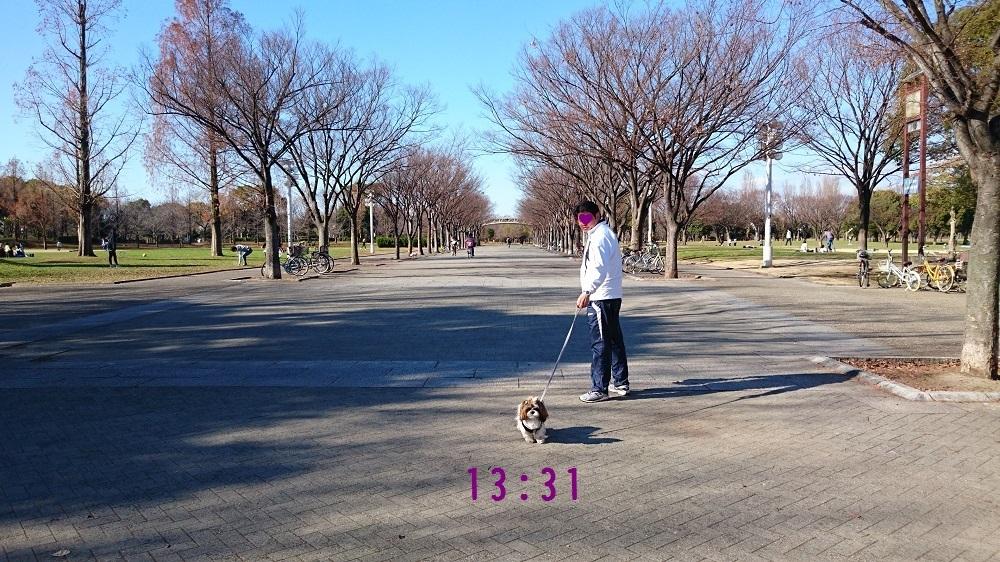c0363378_16355129.jpg