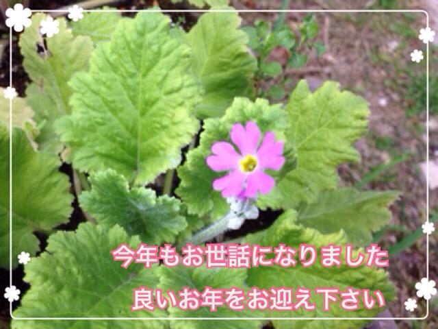 f0162908_17502060.jpg