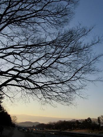 賀茂川 冬の朝_e0048413_196370.jpg