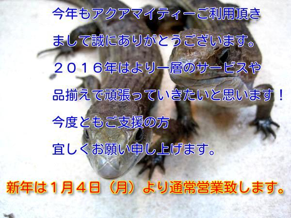 e0254814_1725998.jpg