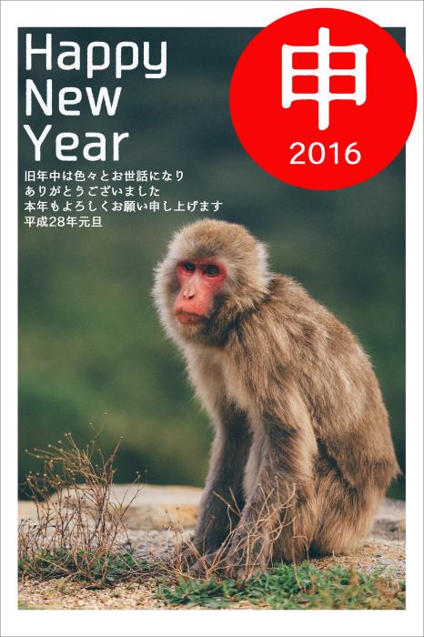 Happy New Year 2016_f0100215_23560851.jpg