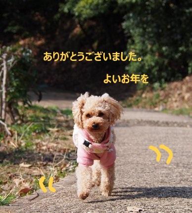 b0149340_1951862.jpg