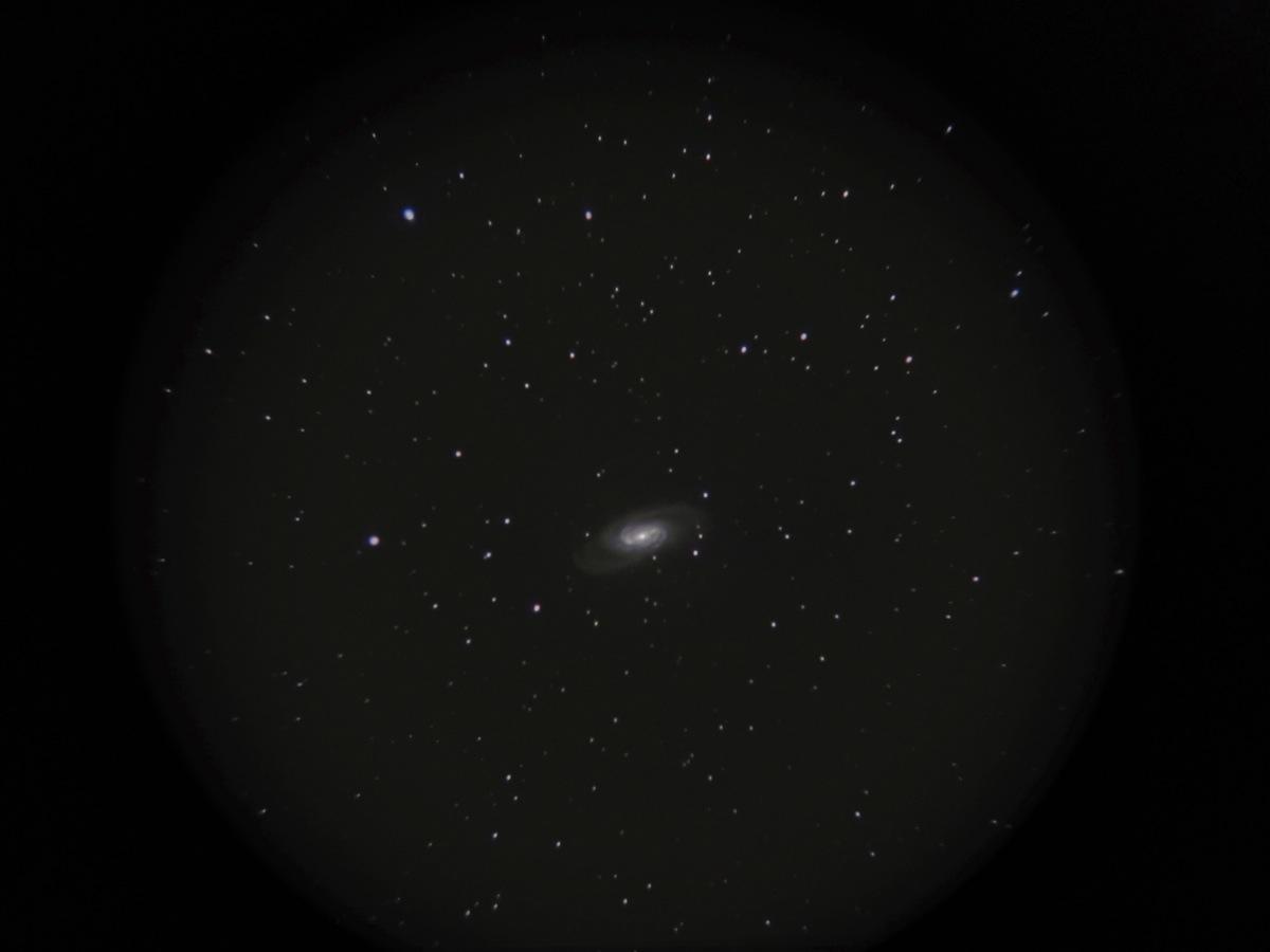 NGC2903 2013_b0167343_14513625.jpg