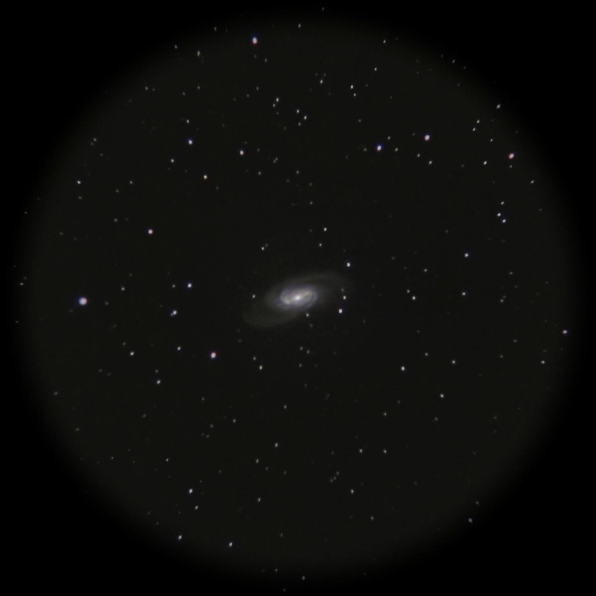 NGC2903 2013_b0167343_14525219.jpg