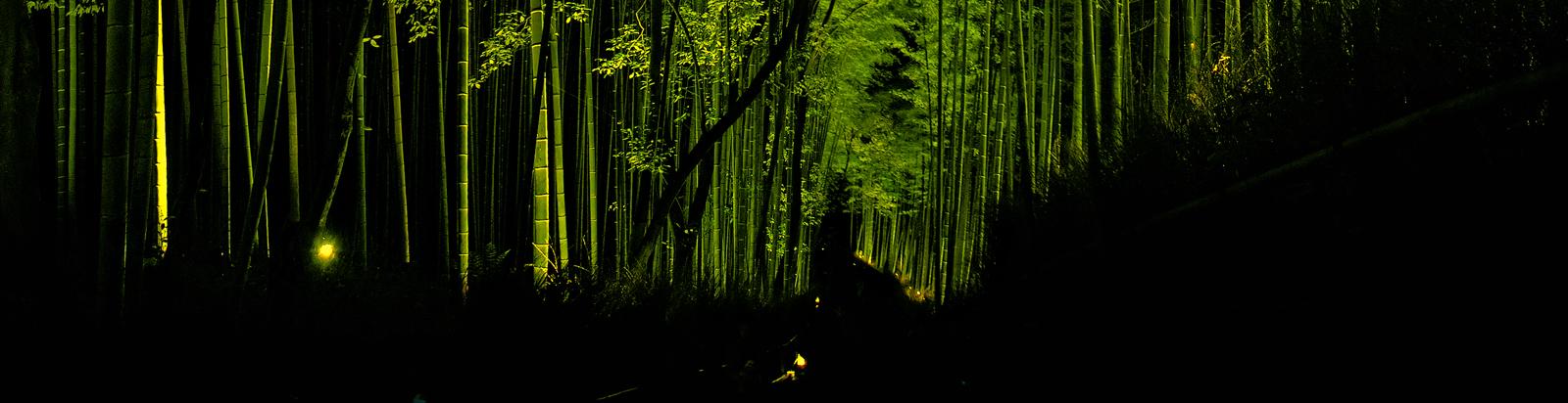 嵐山花灯路 2015                        _f0021869_0224336.jpg