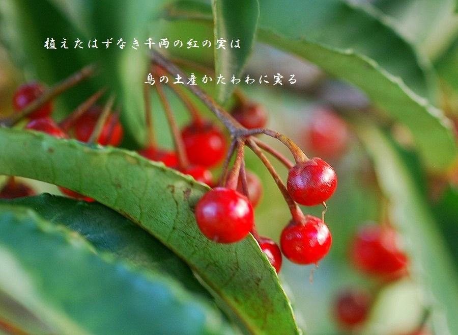 新しい年_c0187781_01580155.jpg