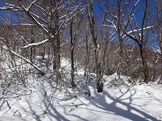 年末の石徹白銚子ヶ峰1810.4m_e0064783_10215674.jpg