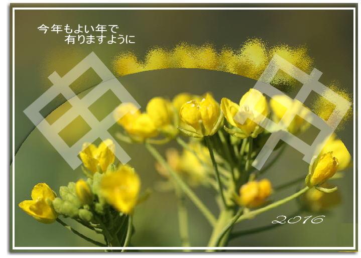 f0164592_2033383.jpg