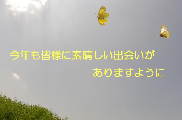 e0167571_76553.jpg